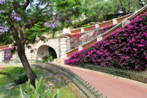 jardin-exotique-monaco